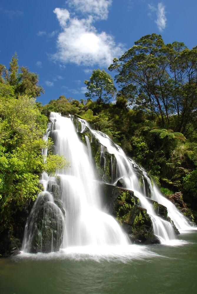 Owharoa Falls, Karangahake Gorge, NZ by rbowman