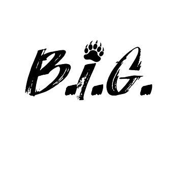 CSGO BIG Sticker by KrAyZiEBOOY