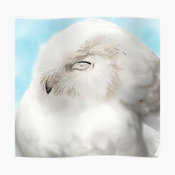 Happy Snowy Owl Poster