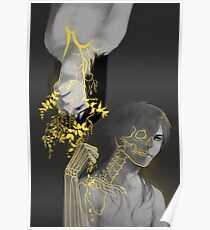 DMMD - Death and the Maiden Poster