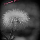 I wish you were here by Maree Toogood