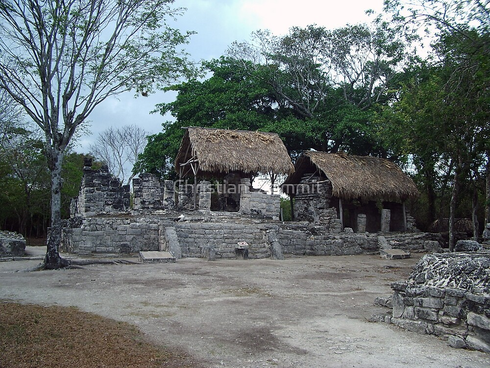 Mayan Ruins by Christian  Zammit