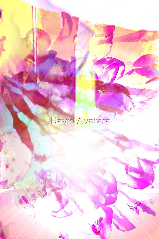 Light by David Avatara
