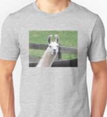 NO!     I AM NOT THE EASTER BUNNY!! Unisex T-Shirt