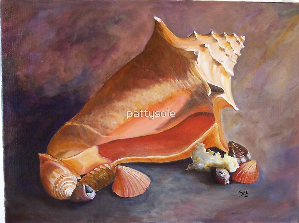 Sanibel Shells by pattysole