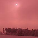 Pink Snow by GabbySunlight