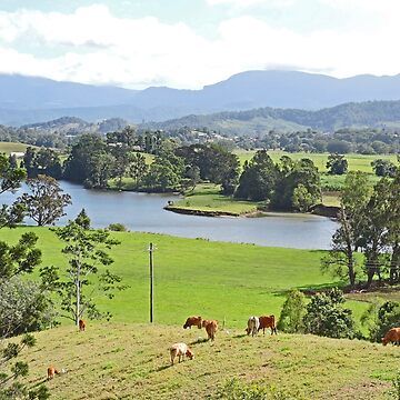 View over the Tweed by grmahyde