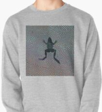 Beau the Frog  Pullover
