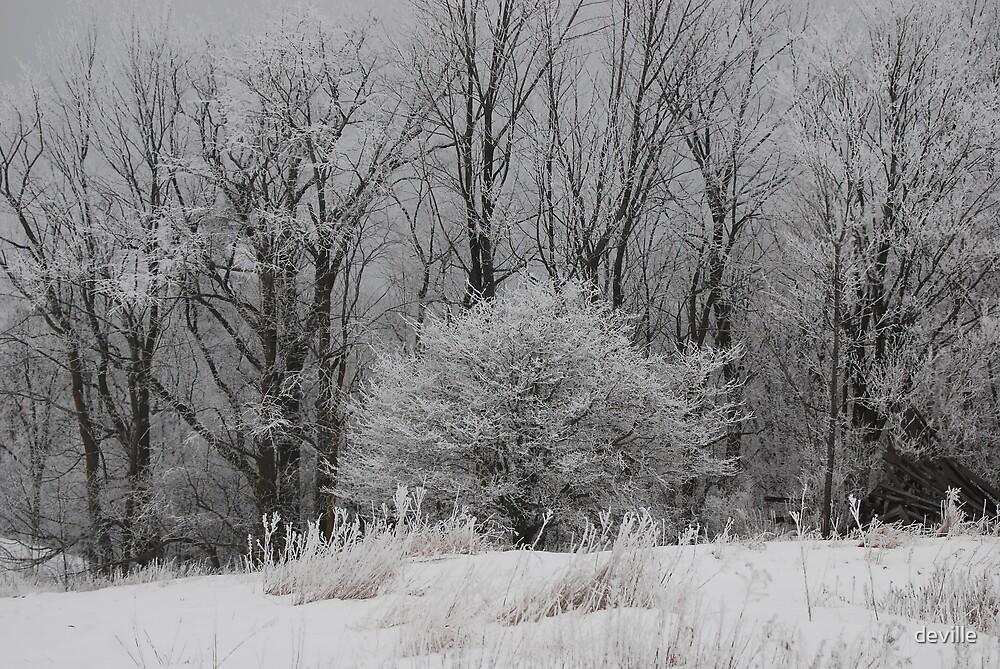 jack frost  by deville