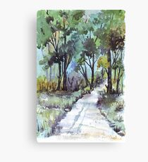 Another forest path Canvas Print