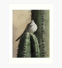 Cactus Dove Art Print