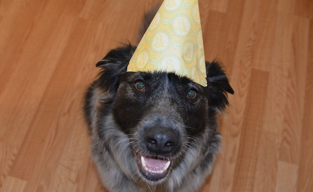 Happy Birthday to the Max by Eskape09