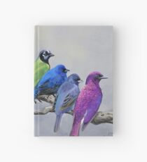Birds of all Colors Hardcover Journal