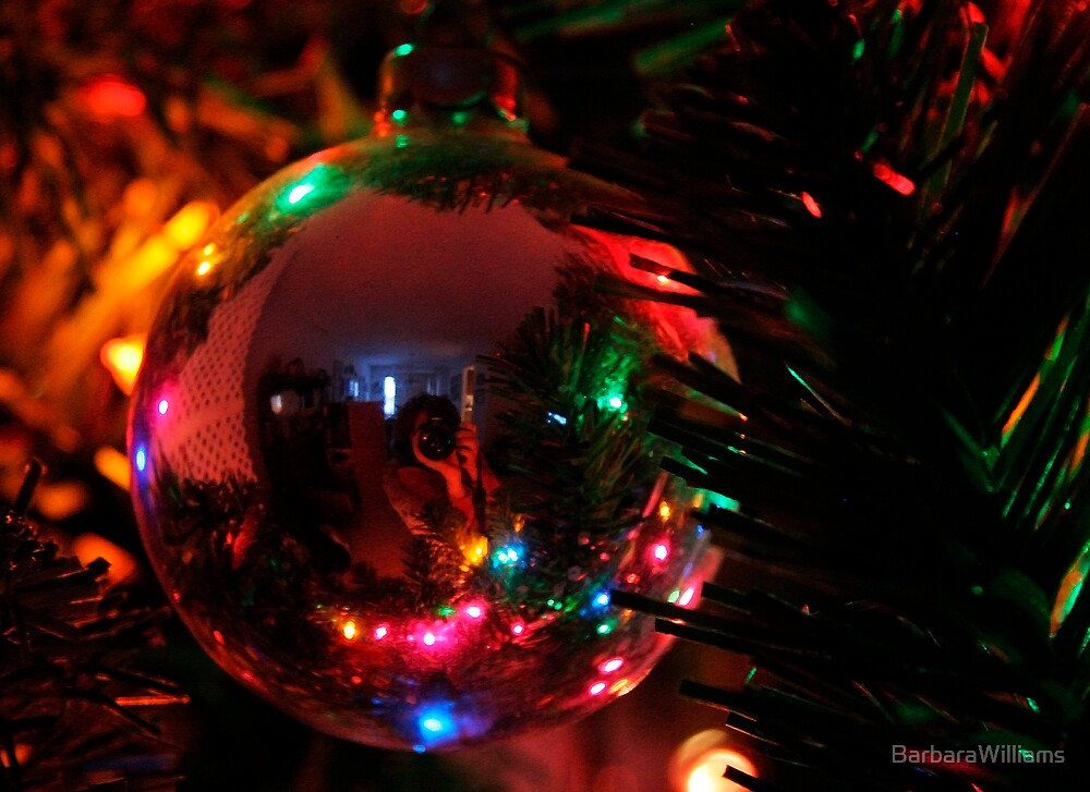 Reflecting in Christmas Ornament by BarbaraWilliams
