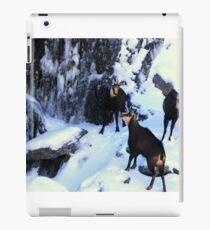 chamois x3 iPad Case/Skin