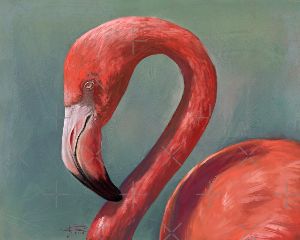 Flamingo by Jeff Powers Illustration