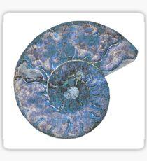Blue Ammonite Magic Sticker