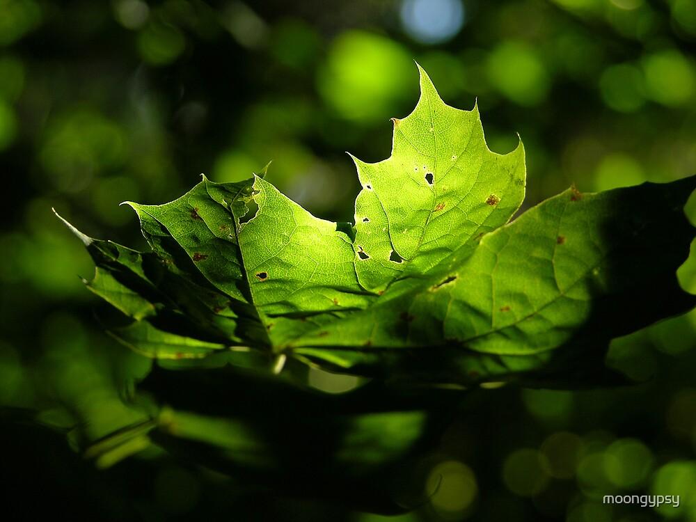 Leafy Green by moongypsy