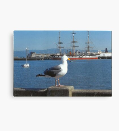 The Seagull Looks Out To The Sea Canvas Print