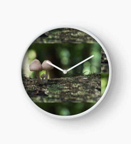 Fungi 3.5 Clock