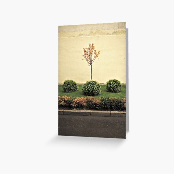 Bushes and the tree... Greeting Card