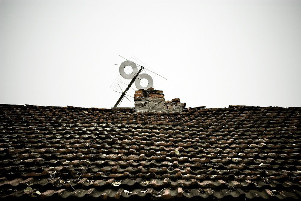 The roof by Ion Rosca
