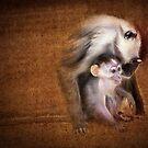 Monkey, monkey by Kurt  Tutschek