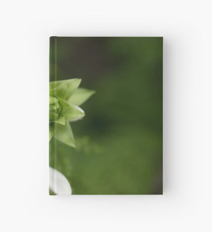 A Little Green and White Hardcover Journal