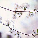 Nature Innocence by JennyRainbow
