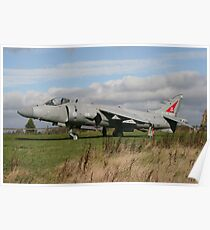Sea Harrier Poster