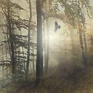 Tale from the past by Dirk Wuestenhagen