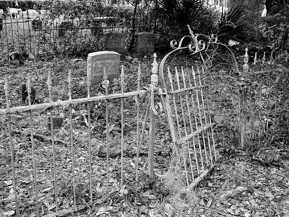 Old area of cemetery by Matt Ferrell