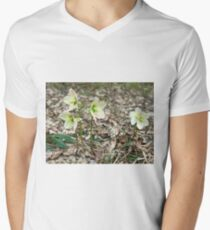 White Snow Roses Mens V-Neck T-Shirt