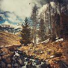 Mountain Creek - Italian Alps by Dirk Wuestenhagen