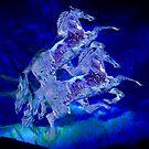 WindWalkers III by Bluemoonshadow