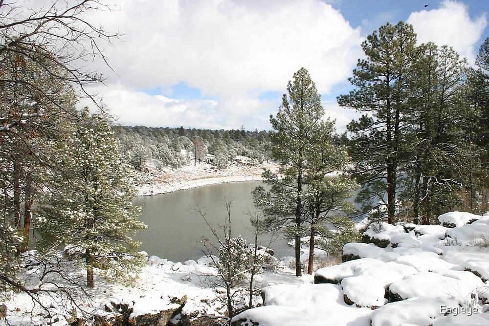 Fool Hollow Lake in Winter by Eagleye