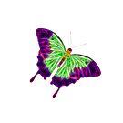 Flutter By by Jason Scott
