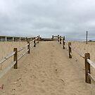Beach Fences by storecee