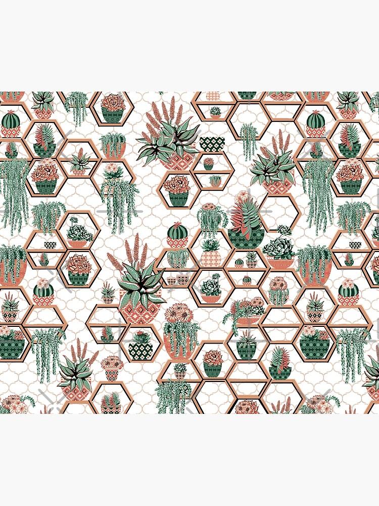 hexagon geometric pattern, 2020, cacti garden, Cacti and Succulent Garden by MagentaRose