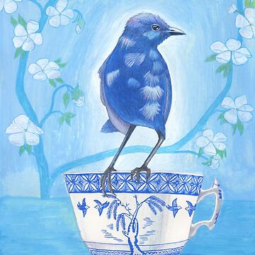 splendid fairy wren on a teacup by EllenLambrichts
