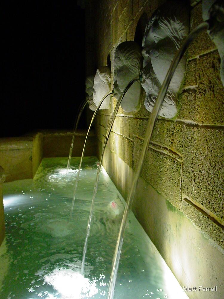 Fountain in St. Augustine, Florida by Matt Ferrell