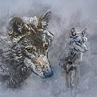 Snow Patrol by Tarrby