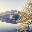 Ullswater in Spring by Nicola  Pearson