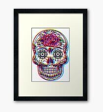 Skullduggery Framed Print