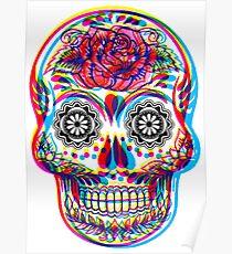 Skullduggery Poster