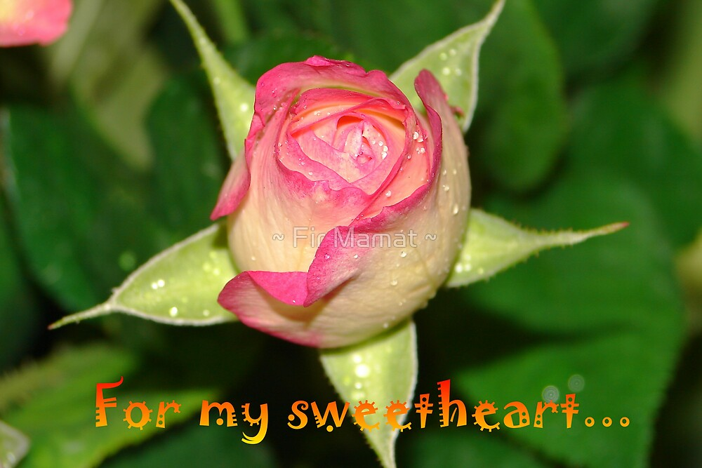 For my sweetheart by ~ Fir Mamat ~