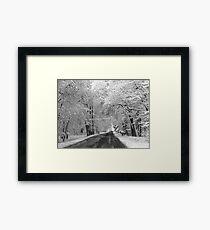 Serene Scene Framed Print