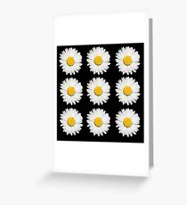 Nine Common Daisies Isolated on A Black Background Greeting Card