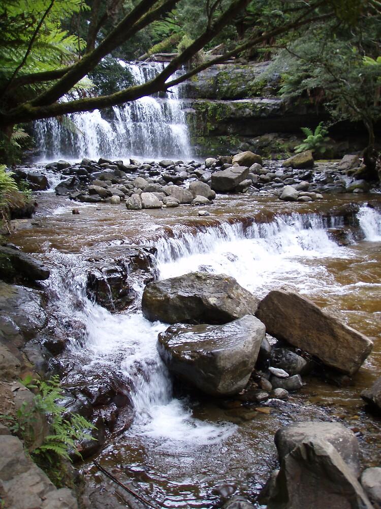 flowing down from the Liffey Falls, Tasmania by gaylene