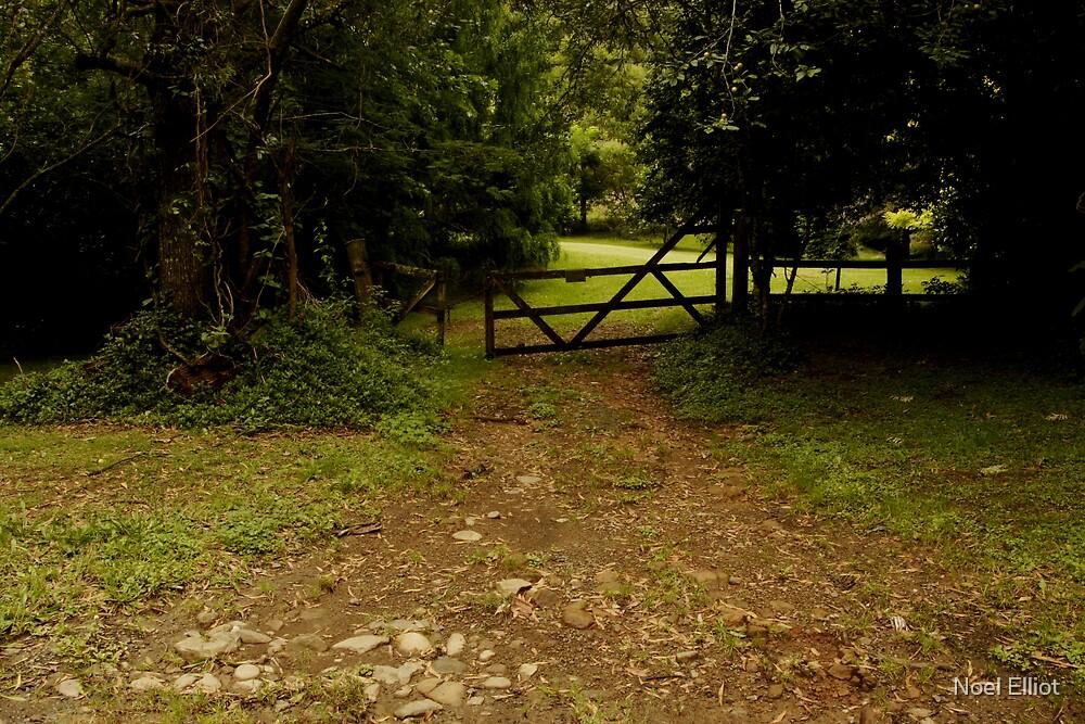 The Path by Noel Elliot